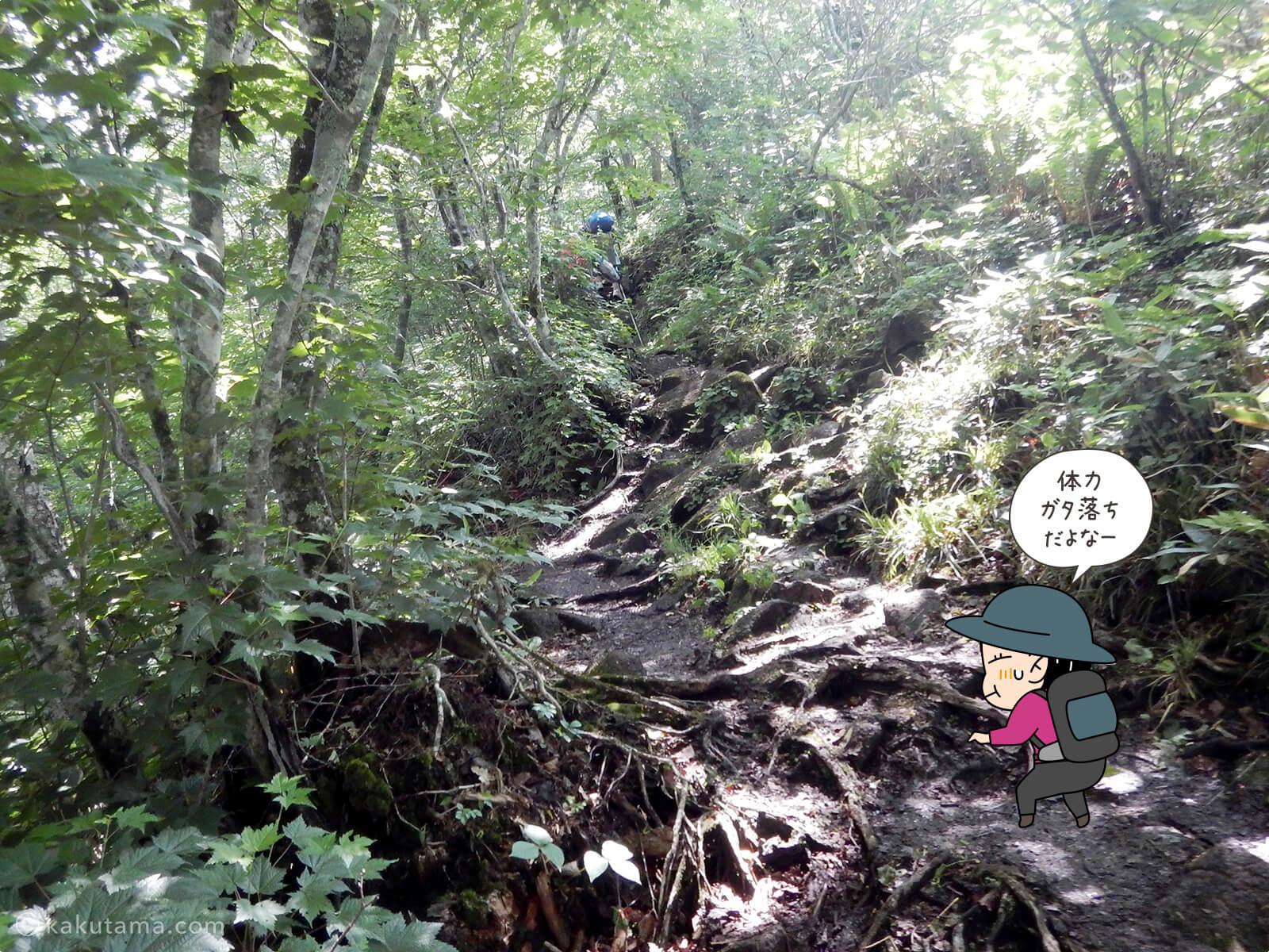 松手山登山コースを登る11