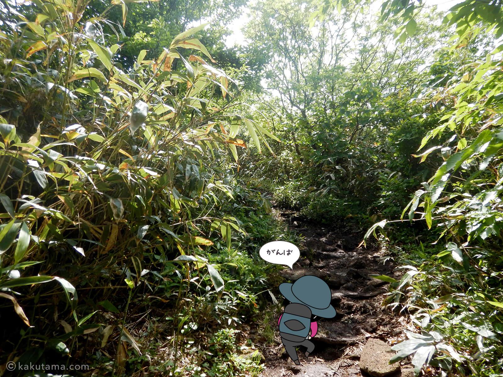 松手山登山コースを登る14