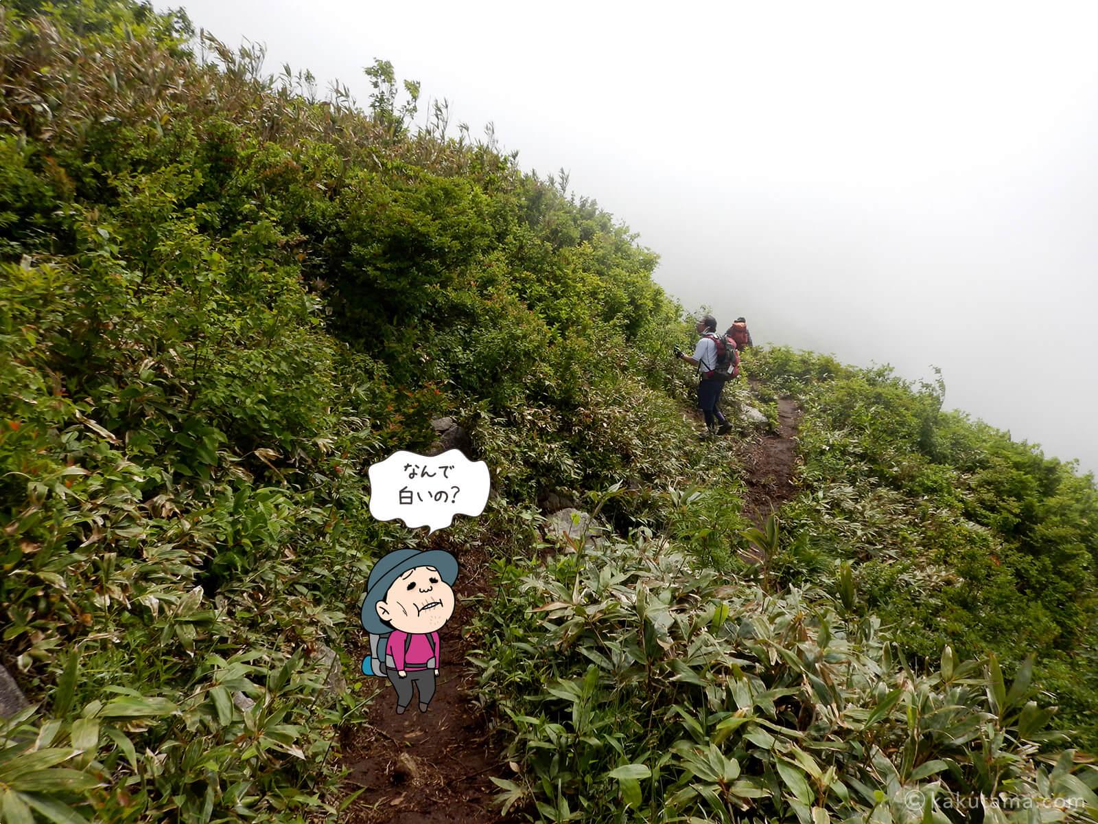 松手山から平標山山頂まで1