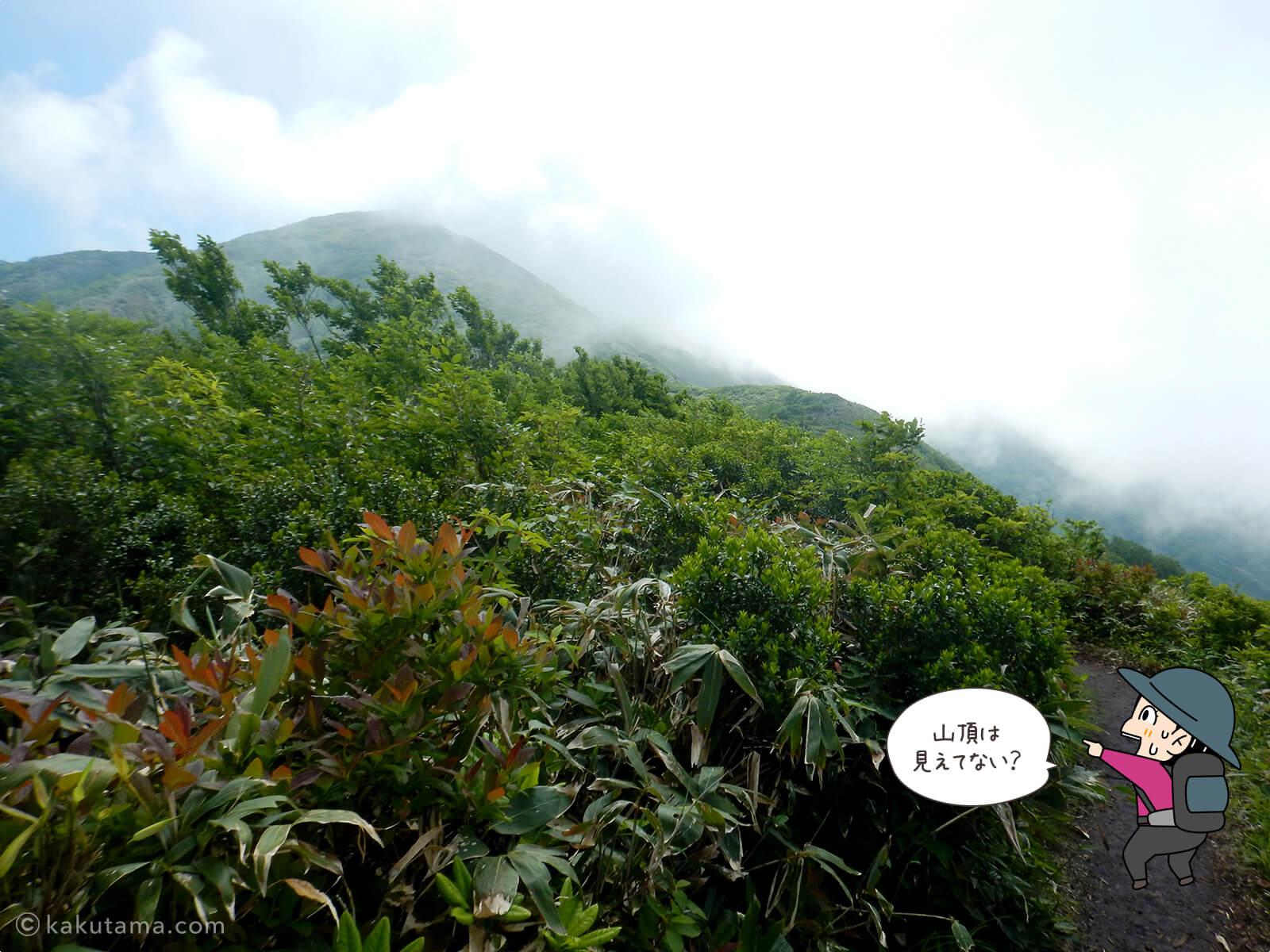 松手山から平標山山頂まで4