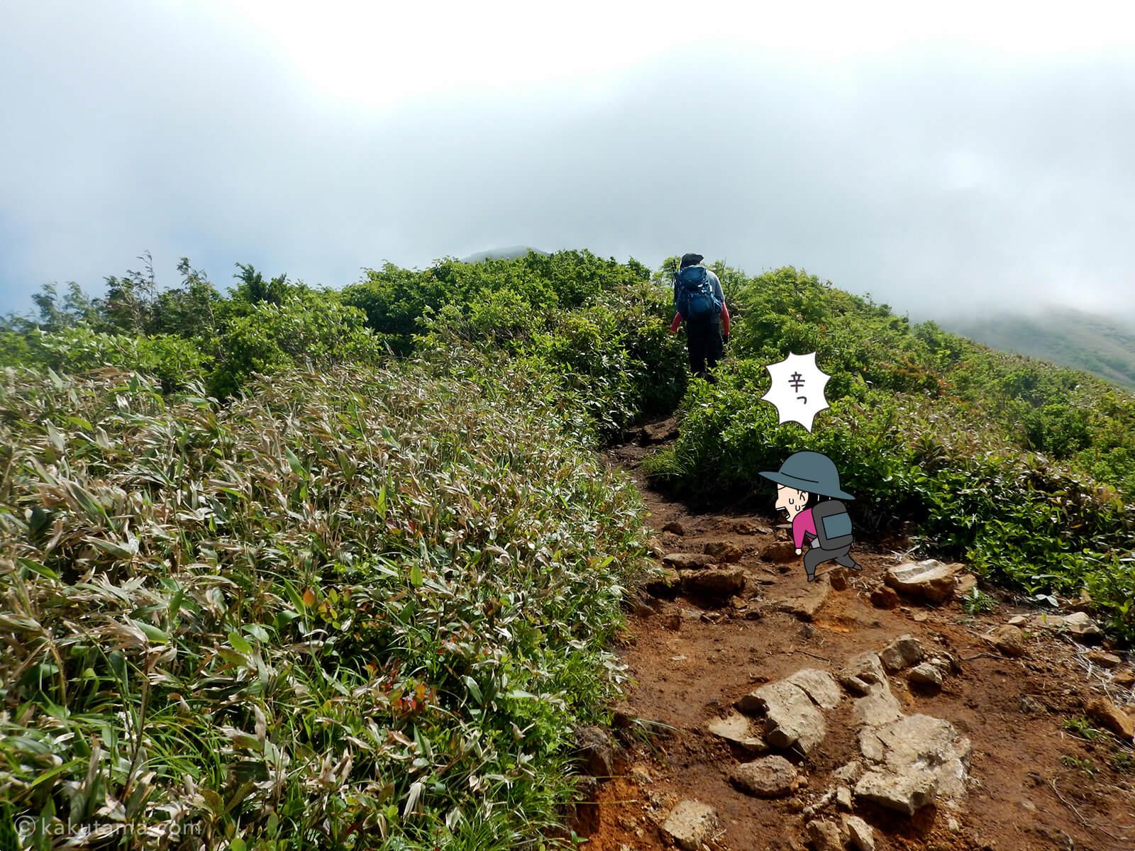 松手山から平標山山頂まで6