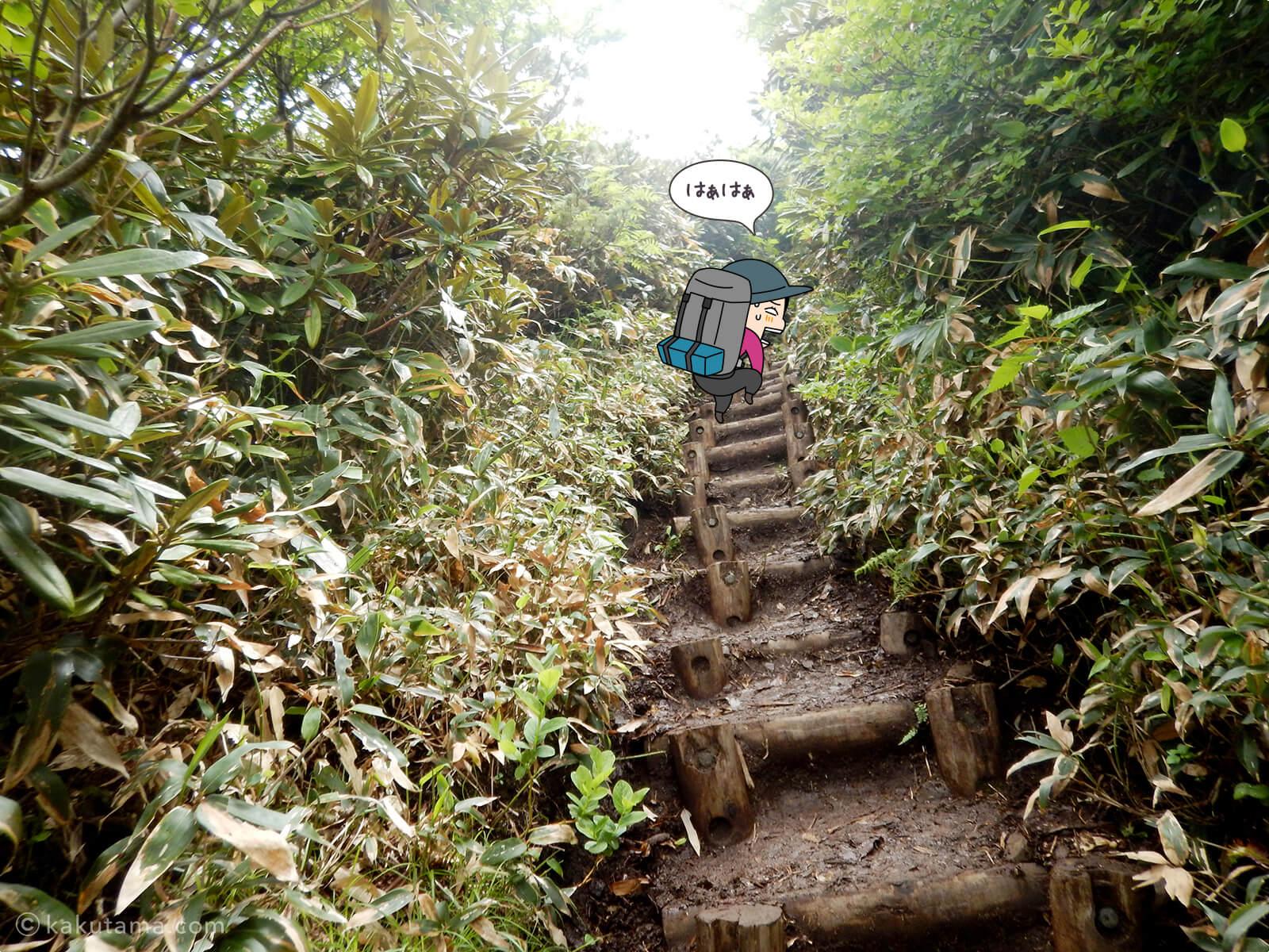 松手山から平標山山頂まで11