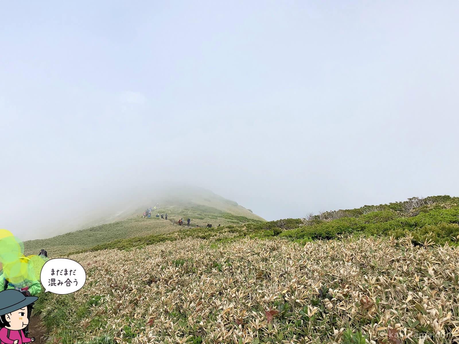 松手山から平標山山頂まで16