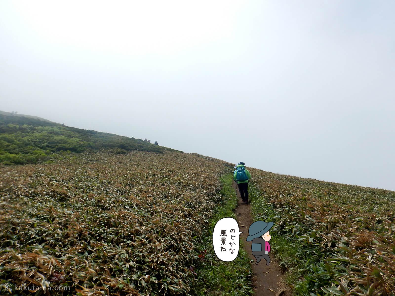 松手山から平標山山頂まで17