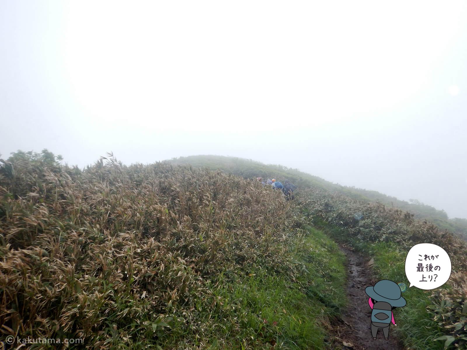 松手山から平標山山頂まで22