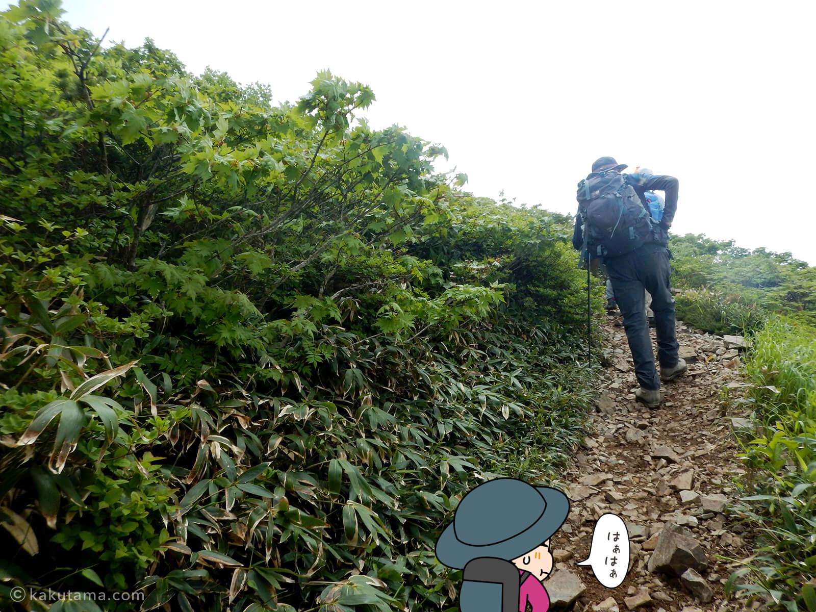 松手山から平標山山頂まで23