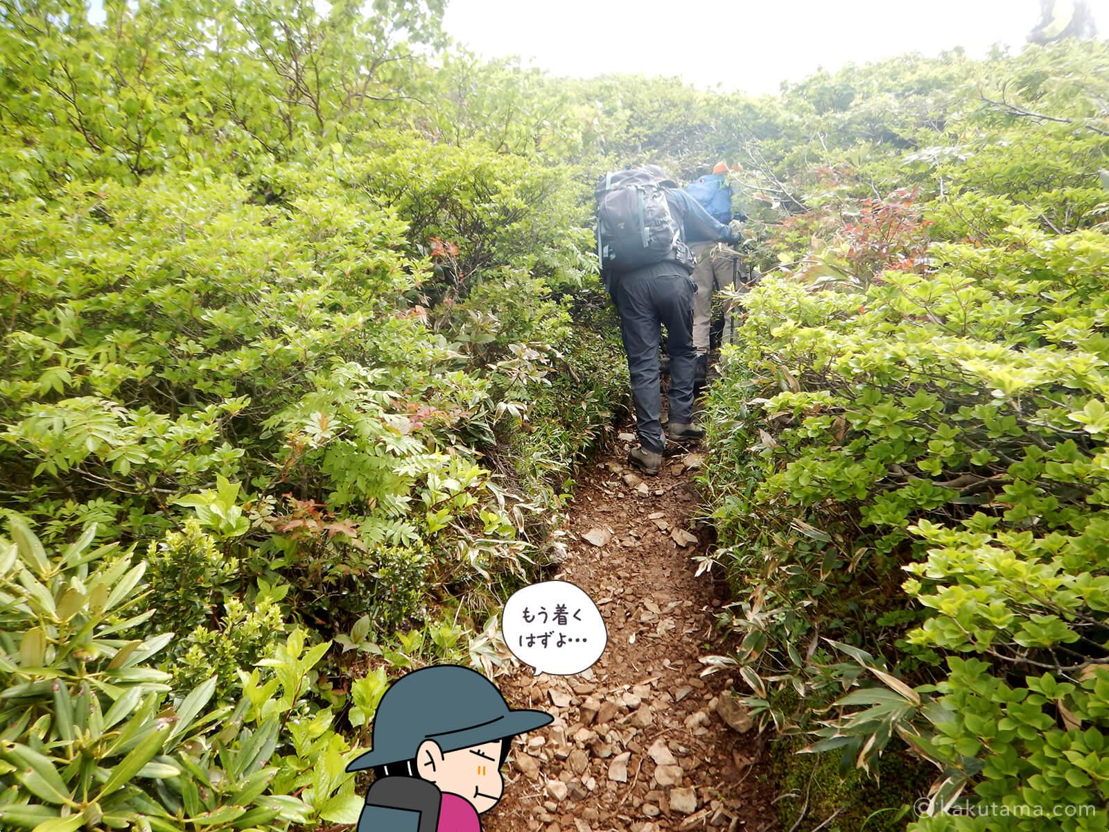 松手山から平標山山頂まで24