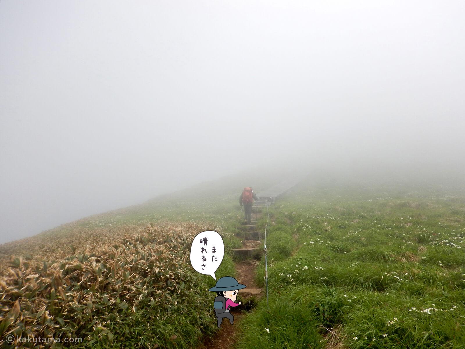 仙ノ倉山への最後の上り1