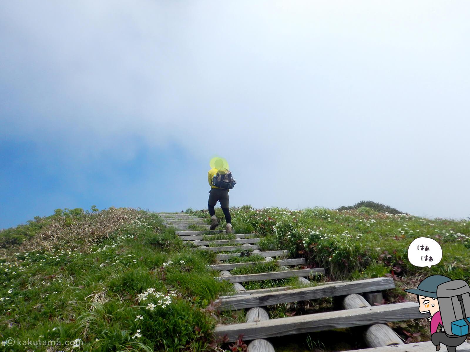仙ノ倉山への最後の上り3