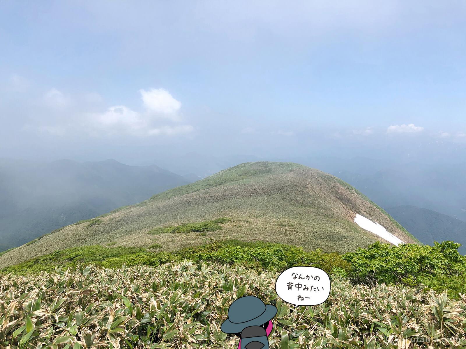 仙ノ倉山から見た山