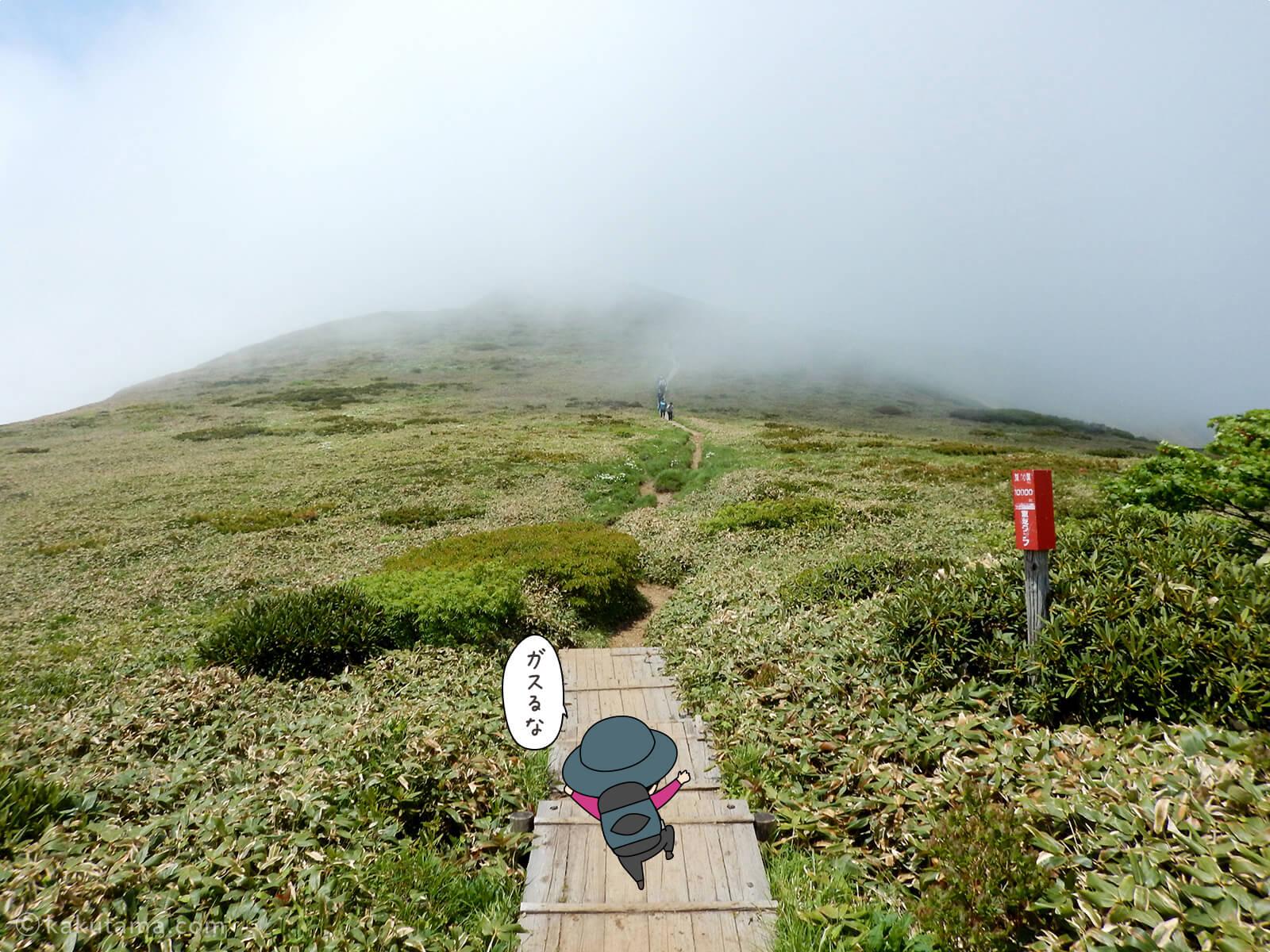 仙ノ倉山から平標山への道