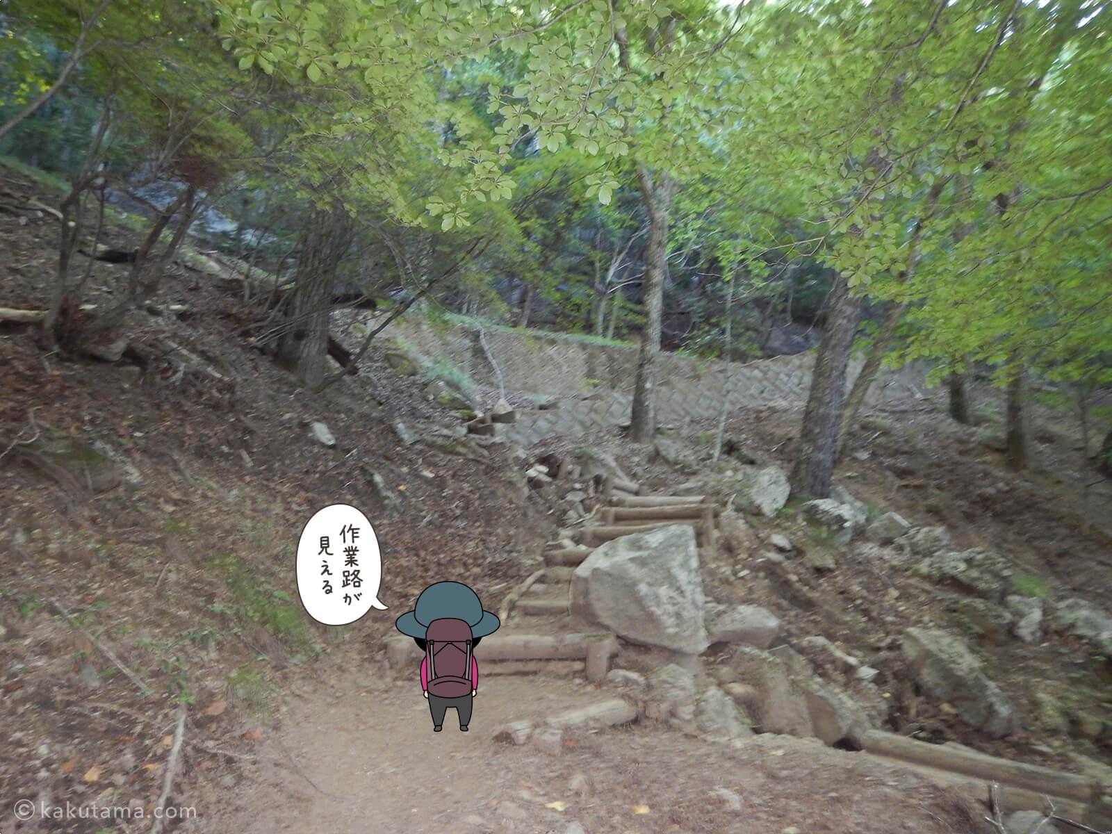 瑞牆山荘から富士見平小屋まで登る3