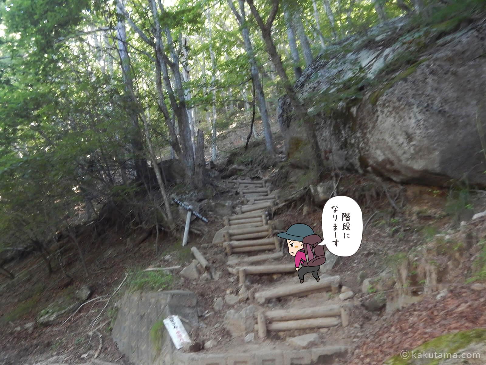瑞牆山荘から富士見平小屋まで登る4