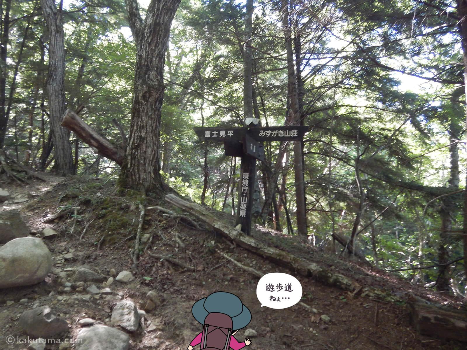 瑞牆山荘から富士見平小屋まで登る9