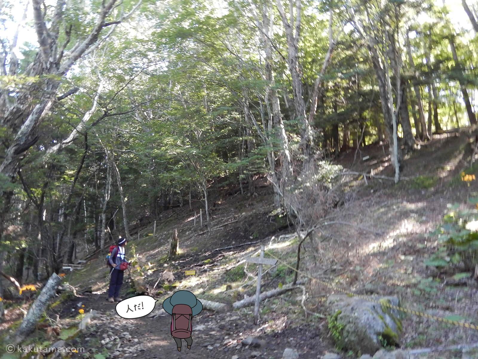 瑞牆山荘から富士見平小屋まで登る10