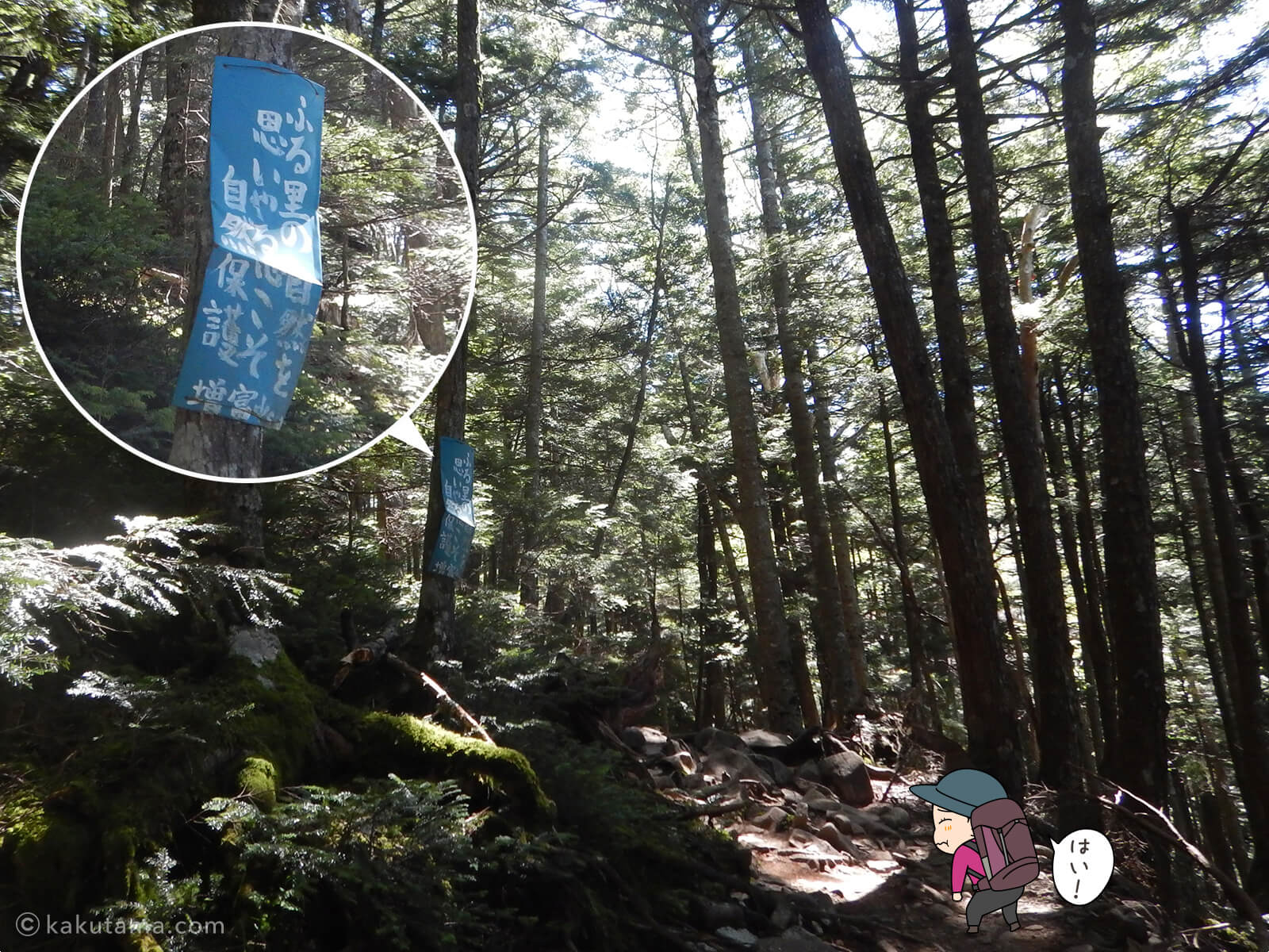 登山道にある自然を大切に看板