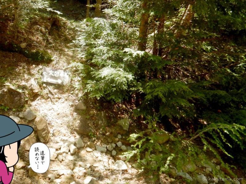 大日小屋から金峰山へ向かって歩く1