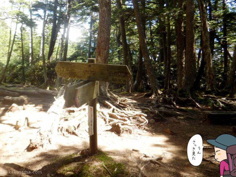 大日岩の道標