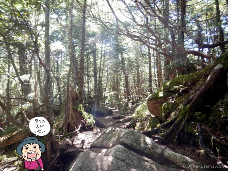 大日岩から金峰山への登り3