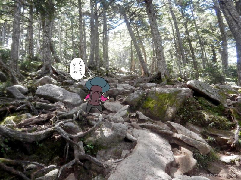 大日岩から金峰山への登り5