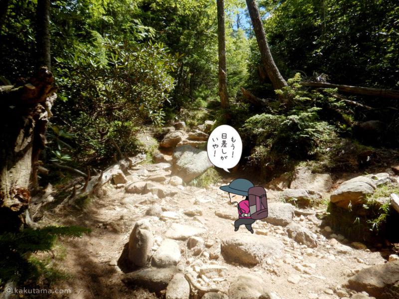 大日岩から金峰山への登り10