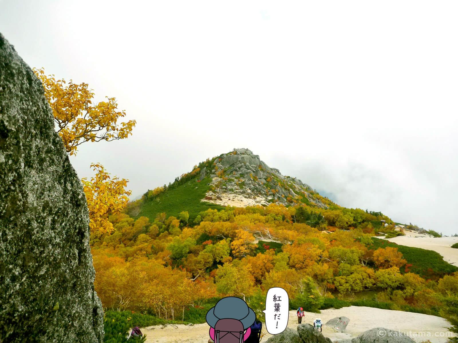 鳳凰三山薬師岳での紅葉写真とイラスト6
