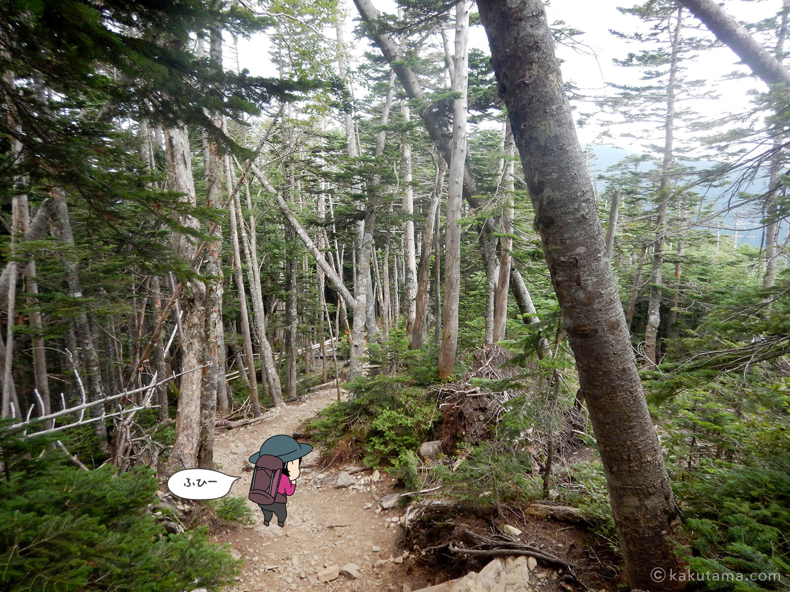 朝日岳から大弛峠へ向かって下山1