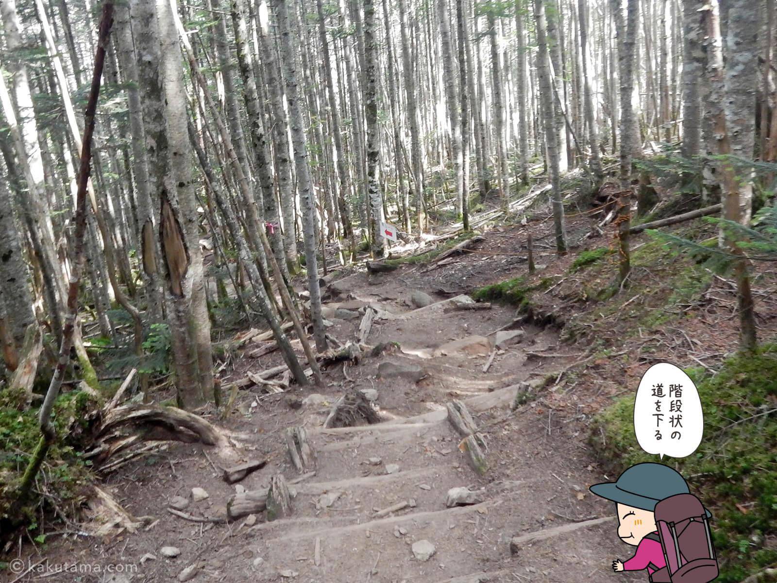 朝日峠から大弛峠へ向かって歩く4