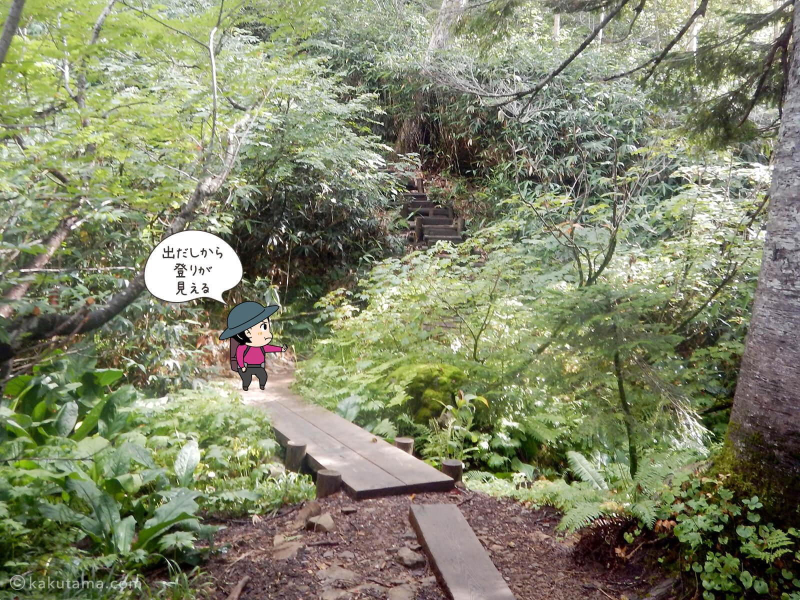 栂池自然公園から登山道へ入る2