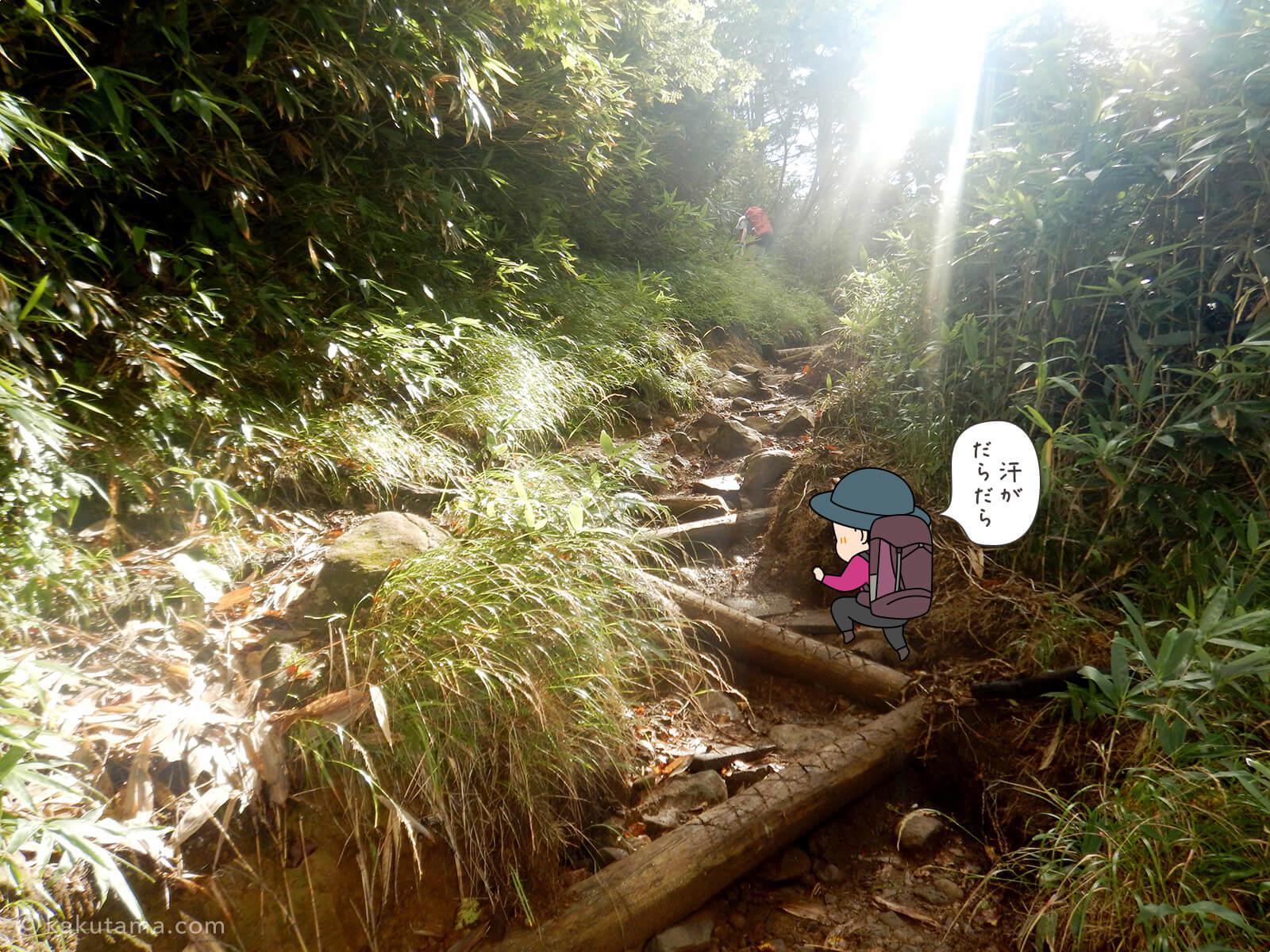 栂池自然公園から登山道の登り2