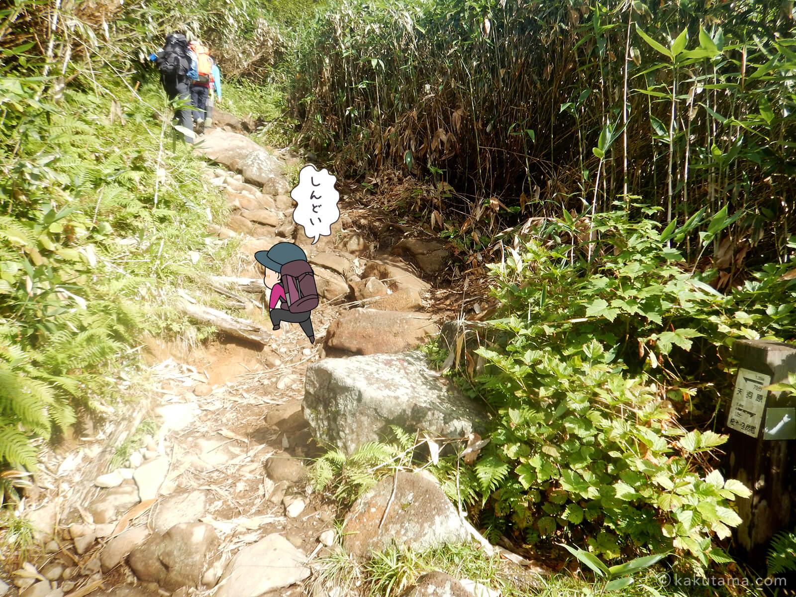 栂池自然公園から登山道の登り5