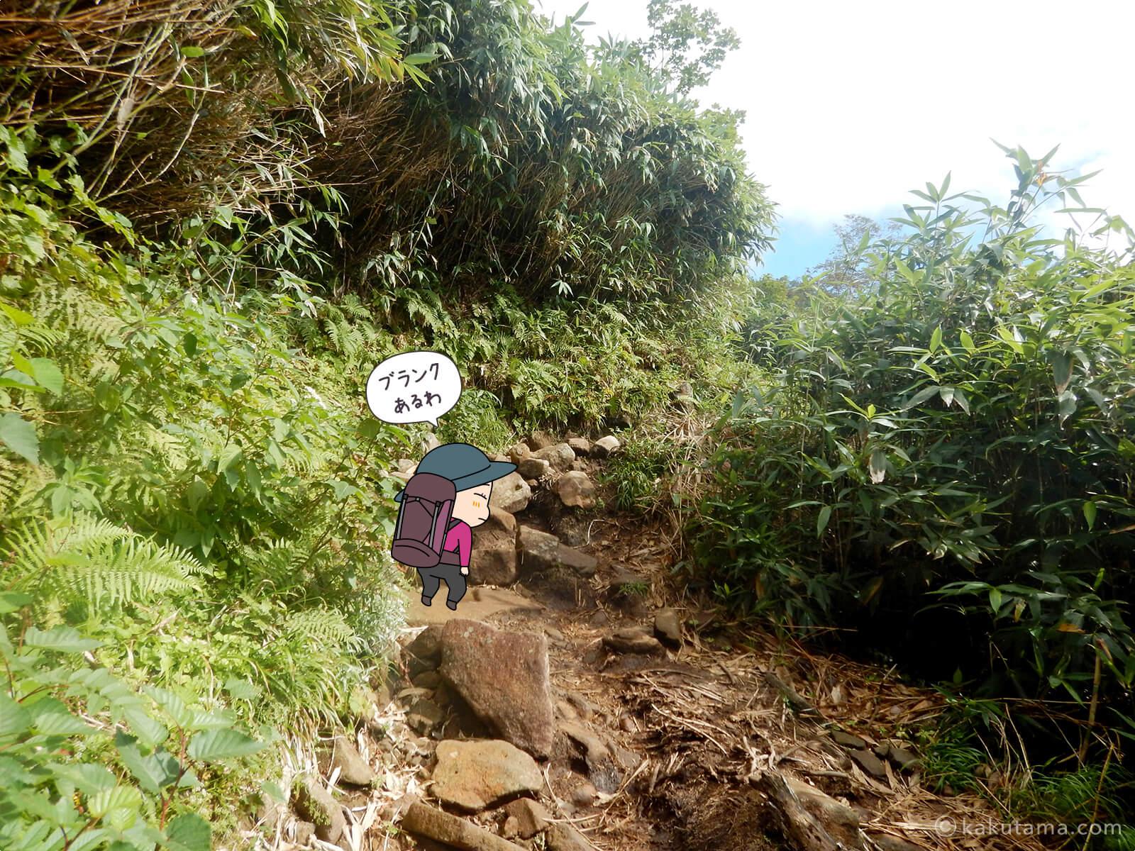 栂池自然公園から登山道の登り6