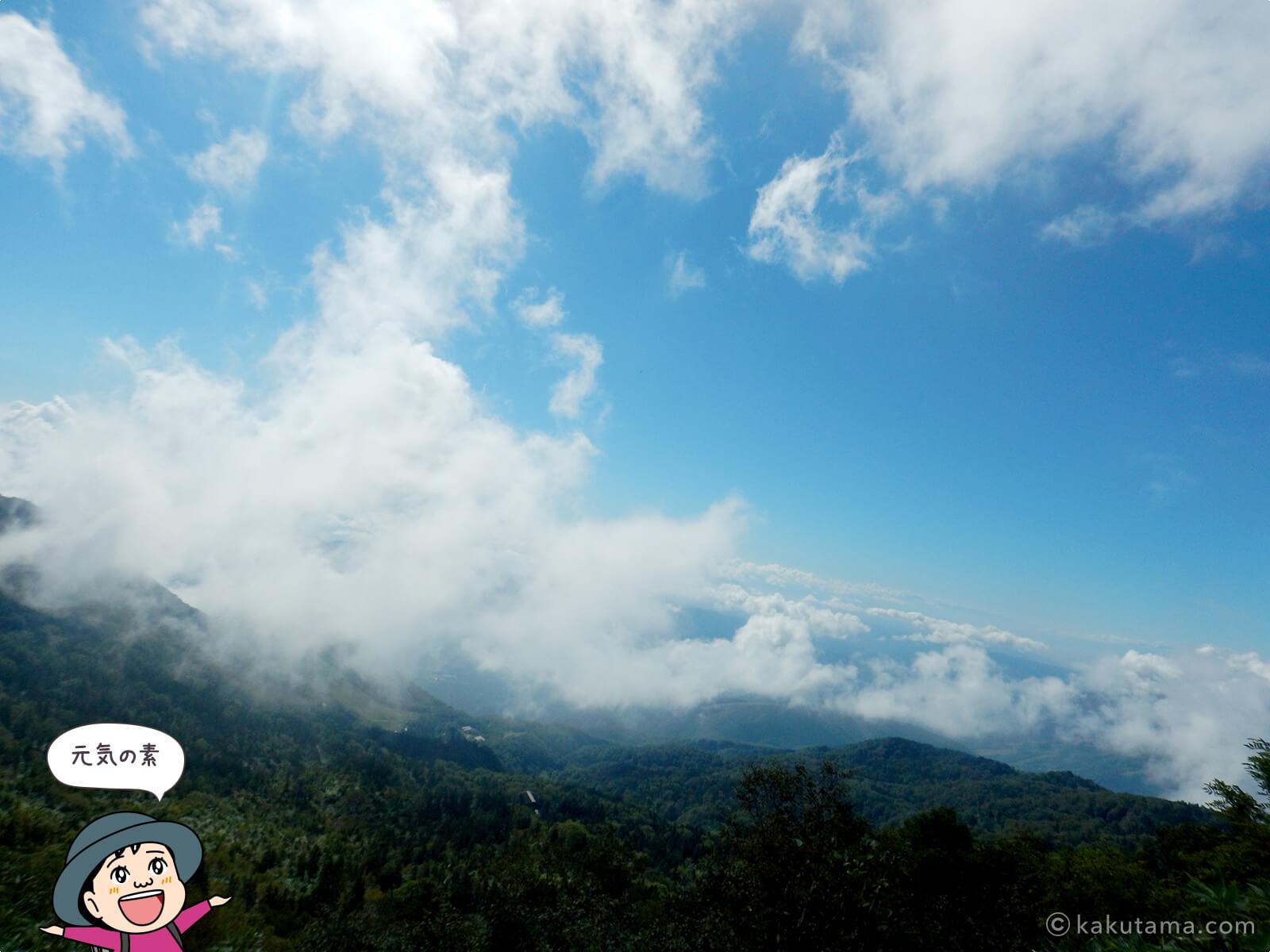 登山道から見上げた空
