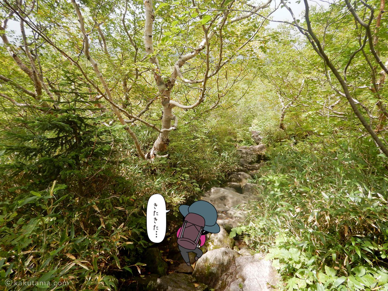 岩場を登る1