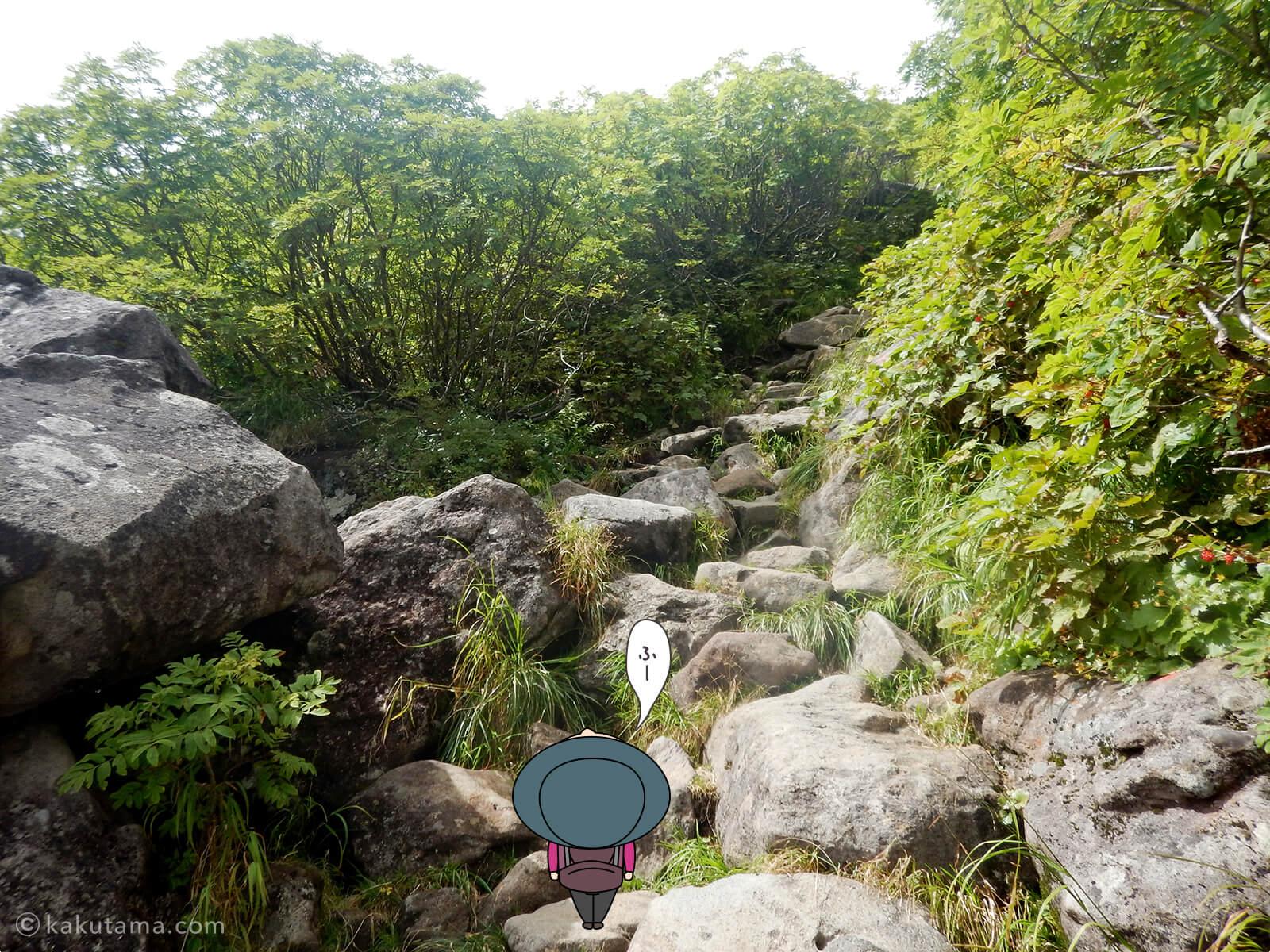 ひたすら岩場を登る2