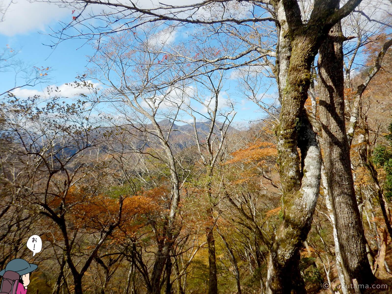 鍋割稜線から見る紅葉