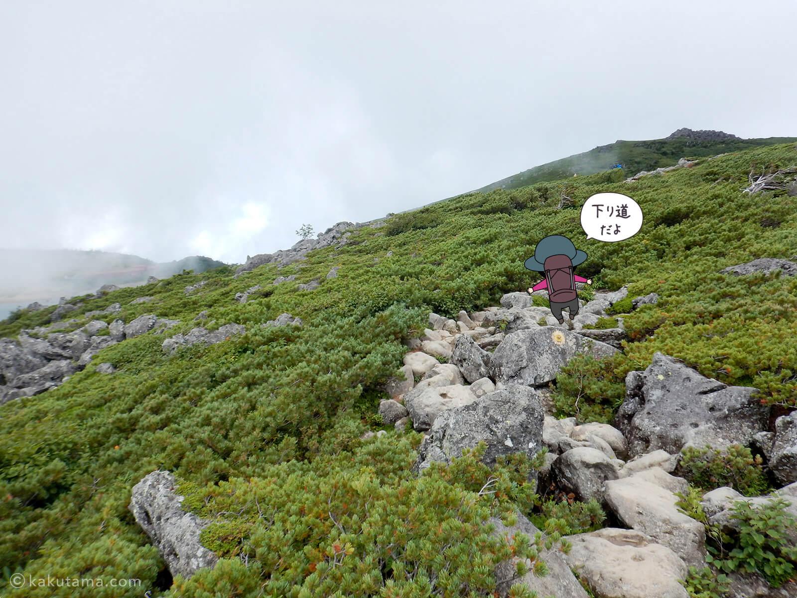 白馬乗鞍岳から白馬大池山荘へは下り道2