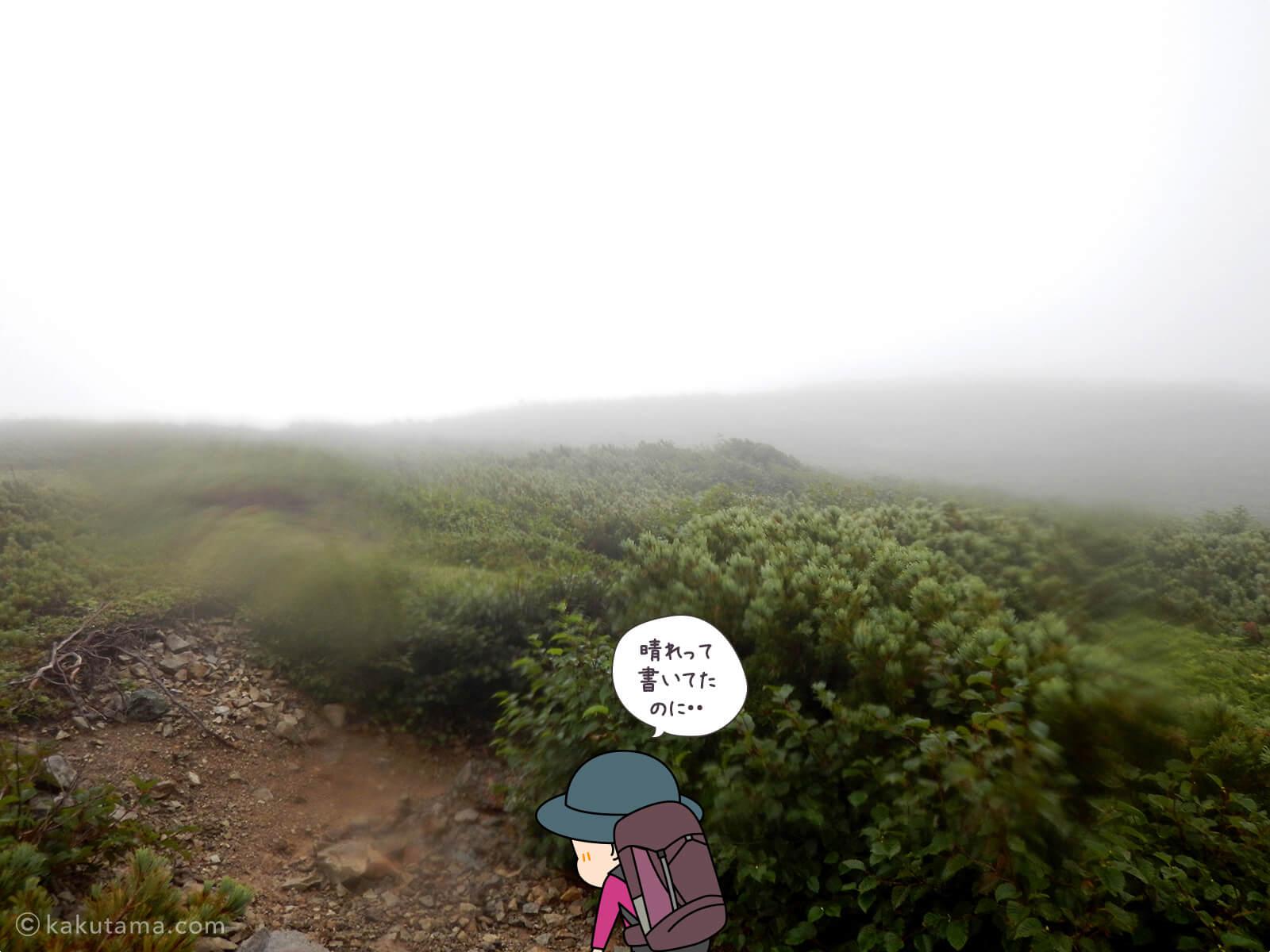 白馬大池山荘から登山開始3