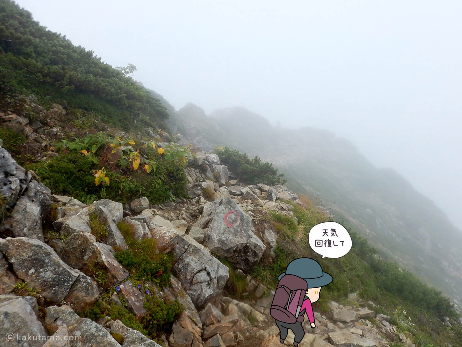 先行きが見えない登山道2