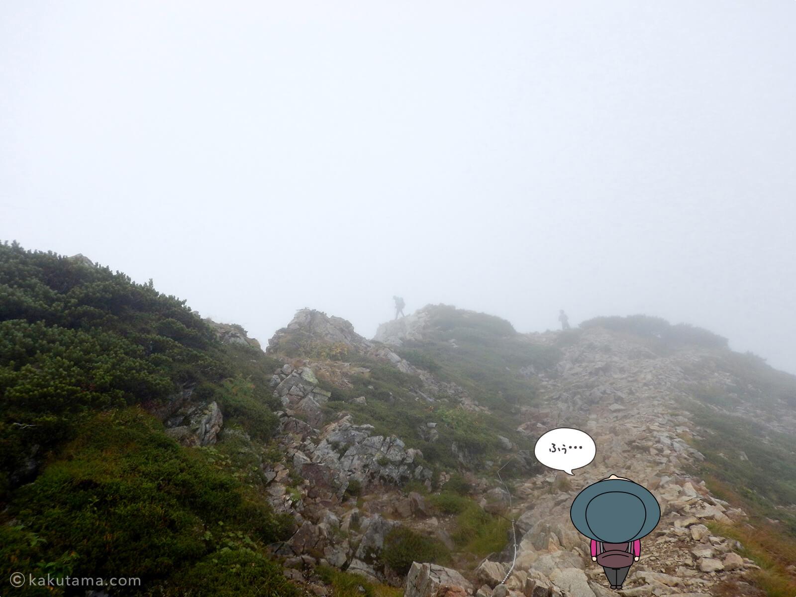 先行きが見えない登山道3