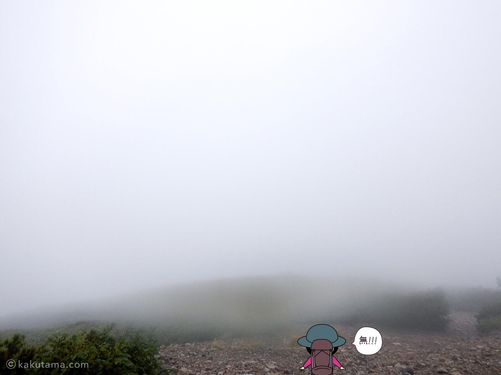 真っ白で視界がわるい登山道