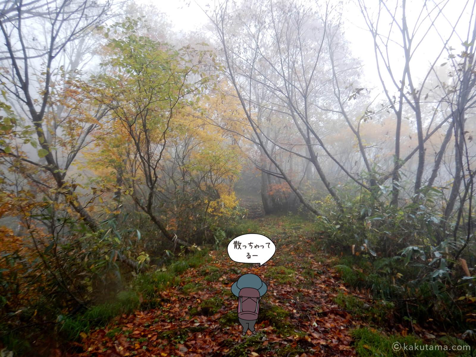 風吹岳の紅葉の写真2