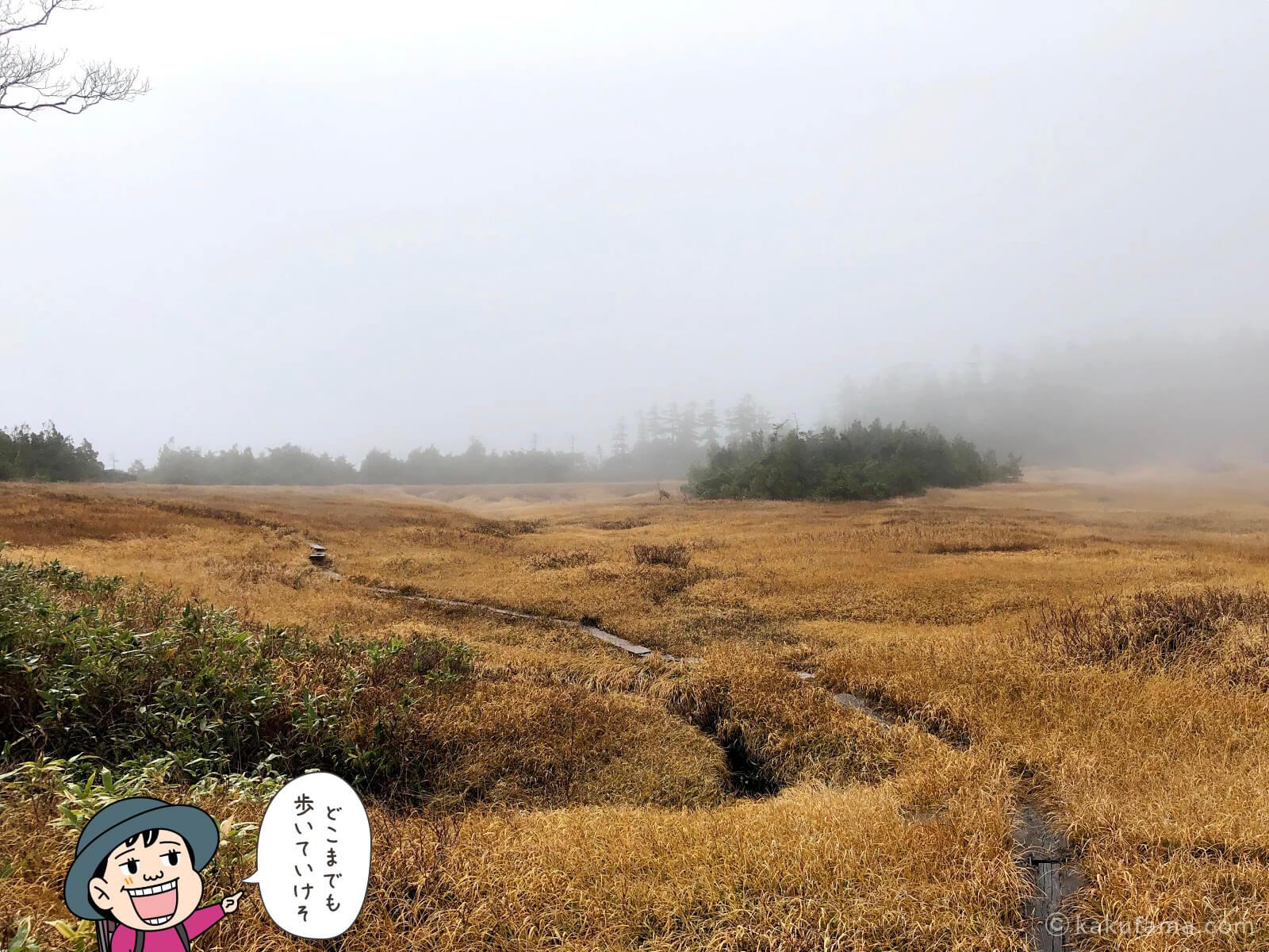 風吹岳の紅葉の写真4