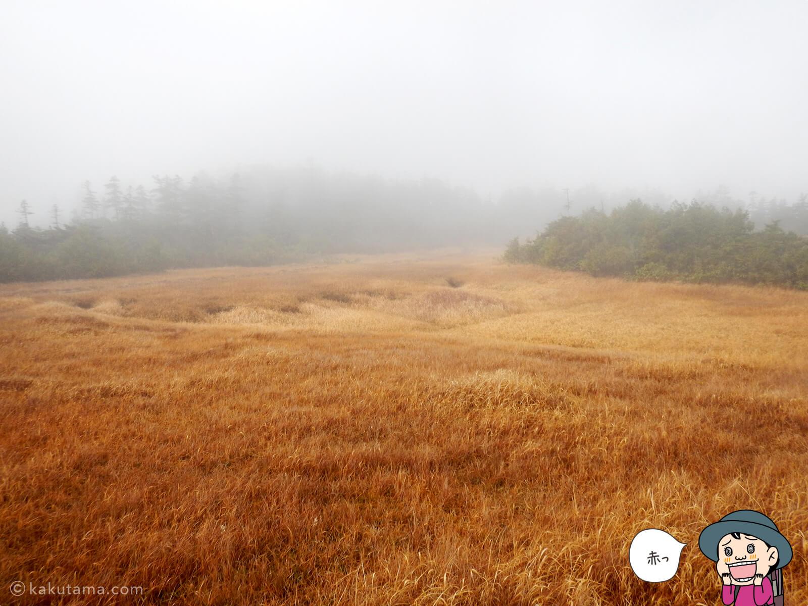 風吹岳の紅葉の写真5