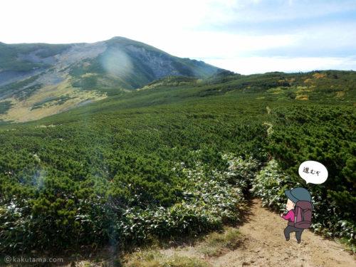中俣乗越から黒部五郎岳へ向かって登る1