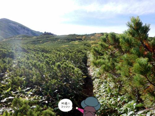 中俣乗越から黒部五郎岳へ向かって登る2