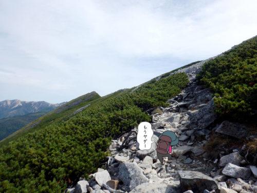 ゴーロになってきた黒部五郎岳への登山道2