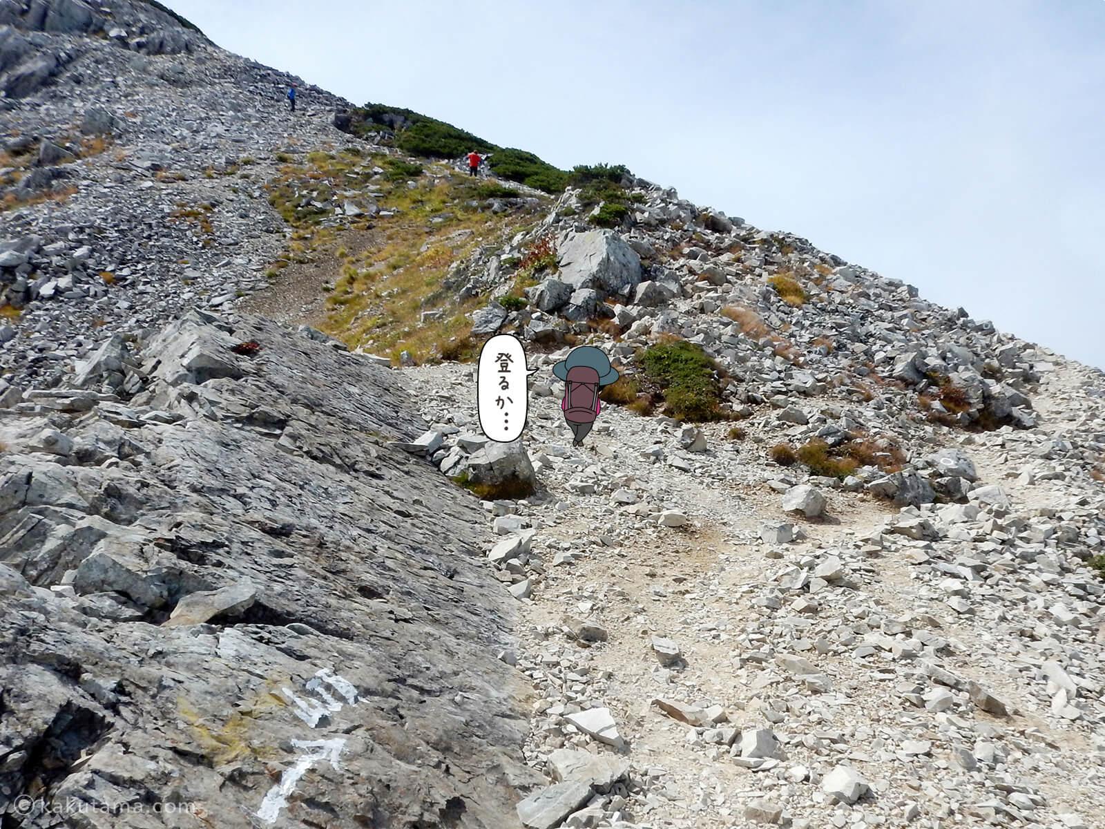 黒部五郎岳山頂へ向かって登る