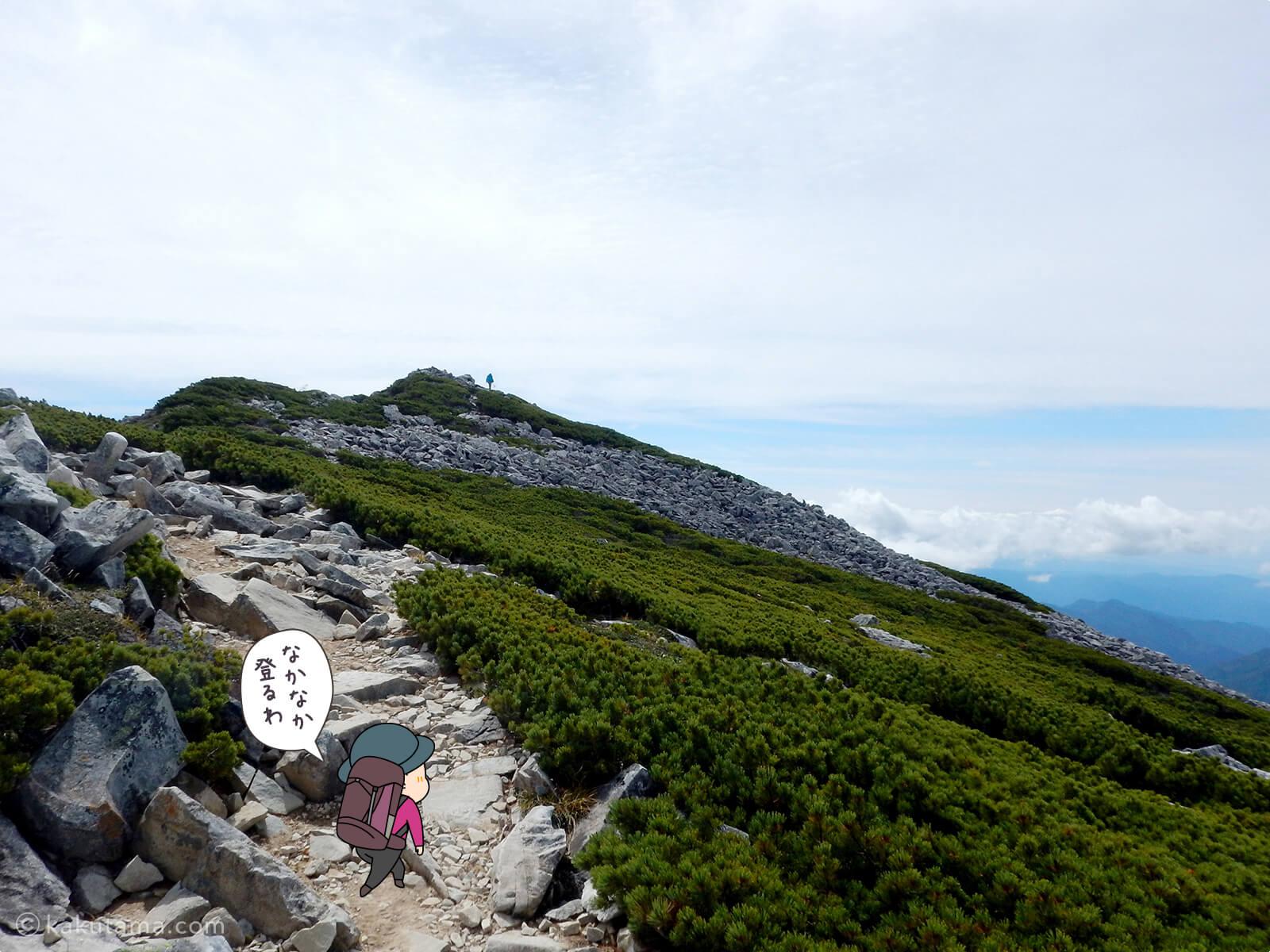 黒部五郎岳山頂までの上り2