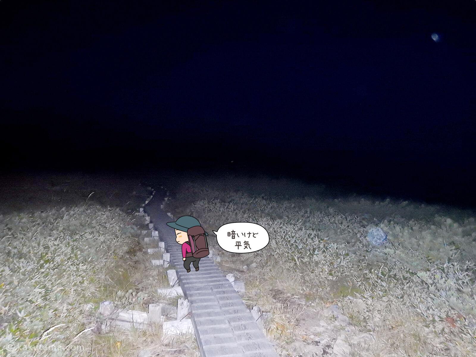 真っ暗な木道2